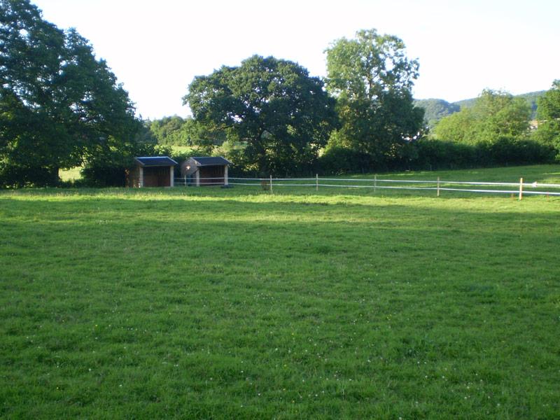 Birch Farm Paddock