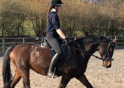 Riding School Herefordshire