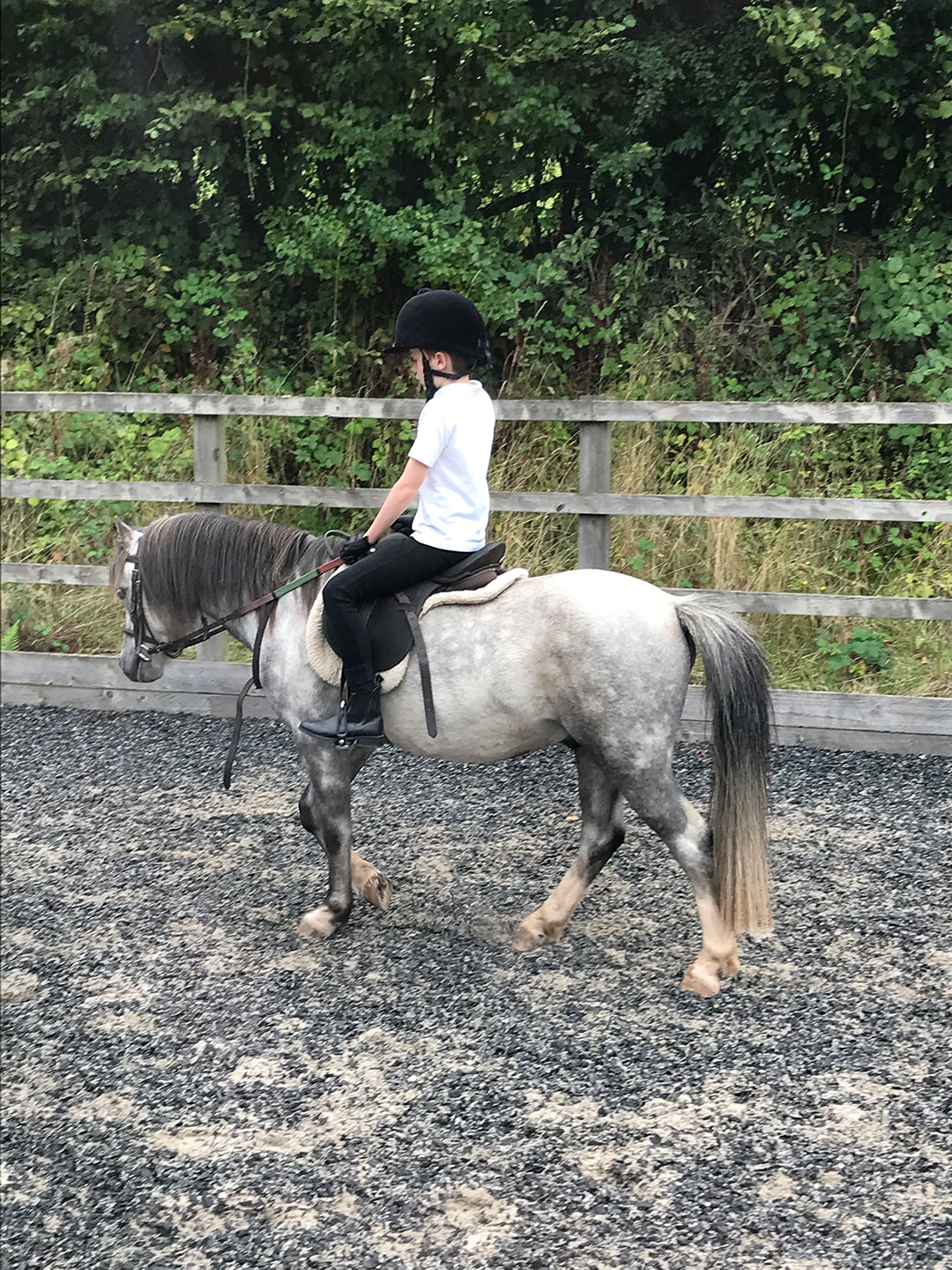 Young child riding lesson